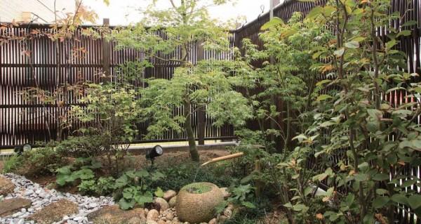 エコ竹 大津垣 19型1