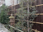 エバー11型セット(吉野杉) タカショー