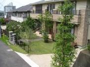大きな植木がある芝のお庭 横浜市M様邸