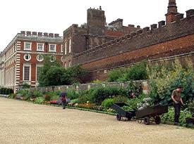 英国ボーダー植栽1